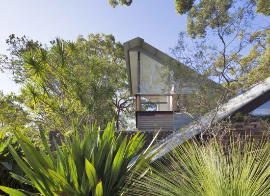 Andy Lehman Design Avalon Architecture Tree House