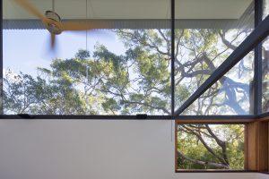 Andy Lehman Design Avalon Architecture Tree House